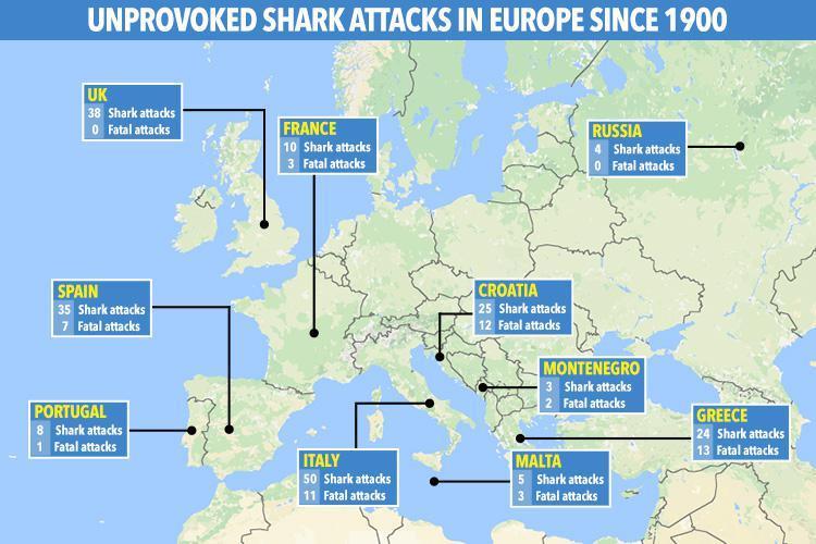 hd-map-shark-attack-v2